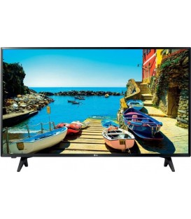"TV LED LG E43LJ500V, 43 "", Panel FULL HD"