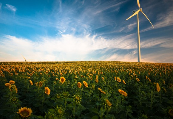 Cómo mejorar la eficiencia energética en tu hogar.